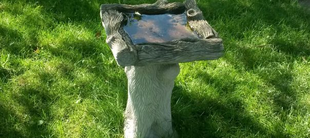 The bird bath we received for a wedding present